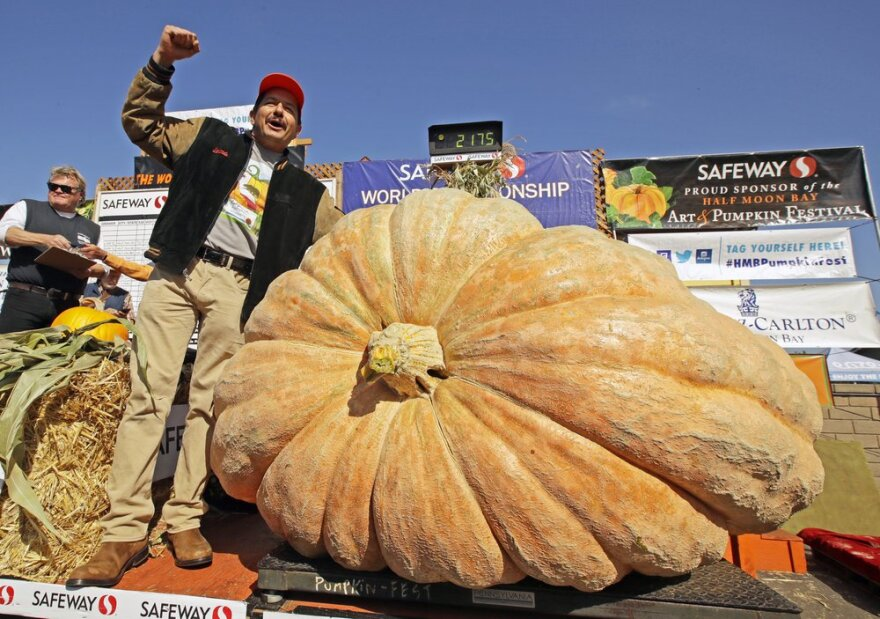 A man celebrates after learning his pumpkin set a new record at 2,175 lbs.