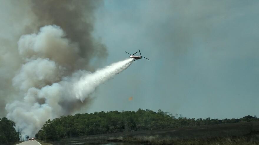 wildfire_1.jpg