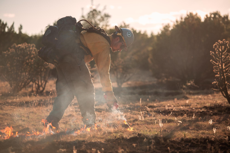 A member of the Wyoming Hotshots ignites grass as part of efforts to control New Mexico's Pine Lodge Fire in 2019.