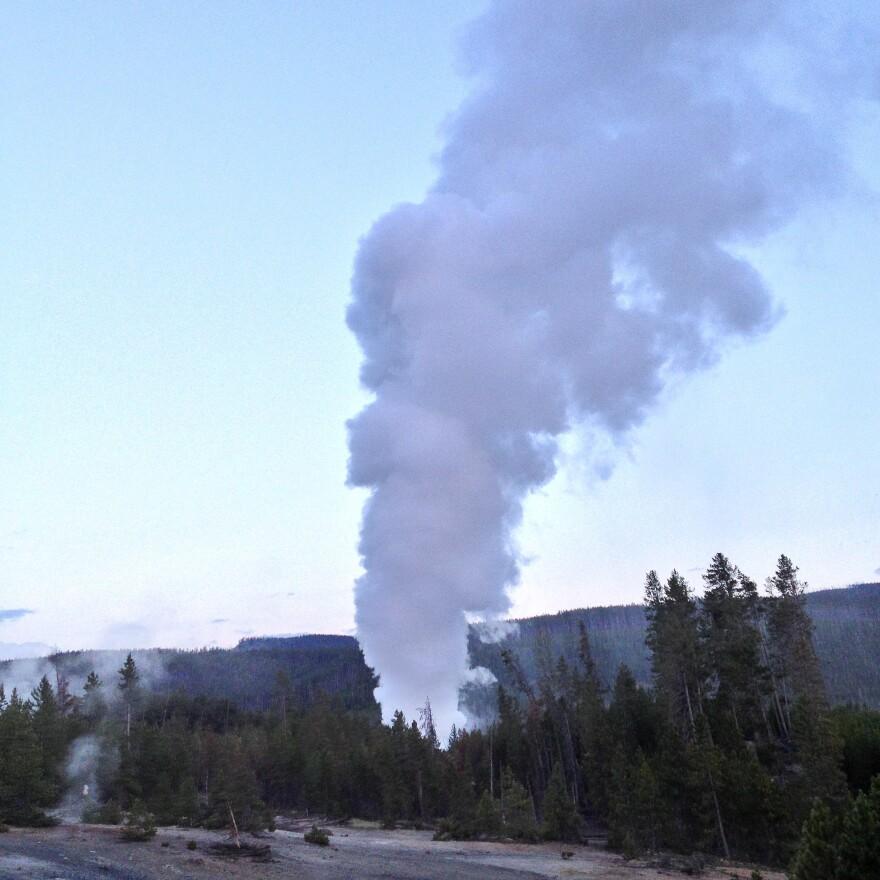 Steamboat Geyser erupts in July 2013.
