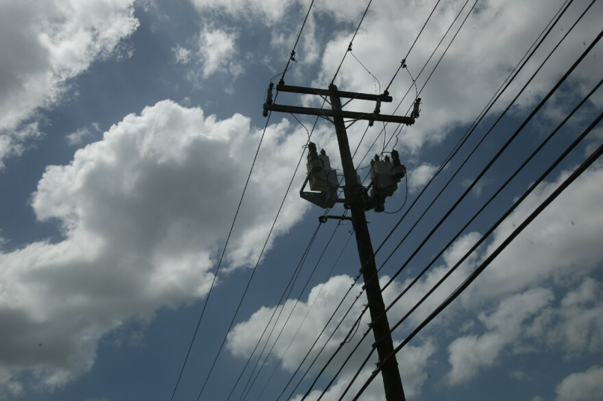 Electricity Lines by Nasha Lee 001.JPG