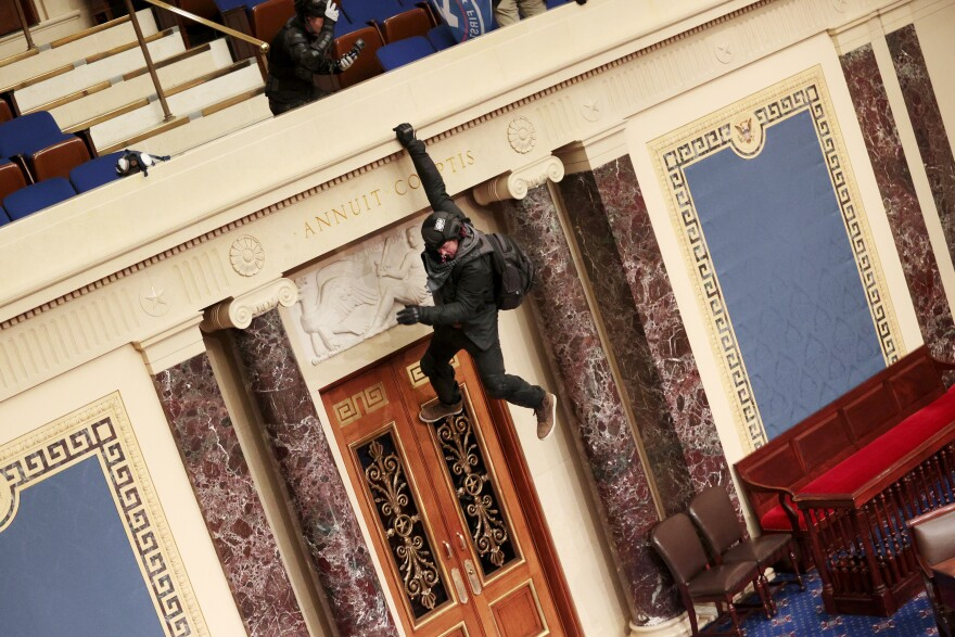 A protester is seen hanging from the balcony in the Senate Chamber.