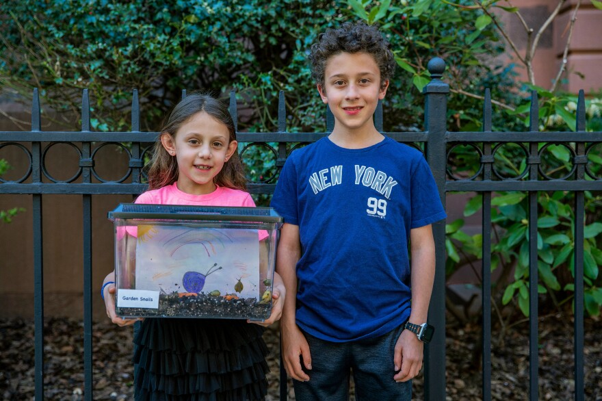 Second-grader Violet Goldberg and her brother, Jonah Goldberg, who is in fifth grade, are fostering the garden snails from the PS 58 science classroom.