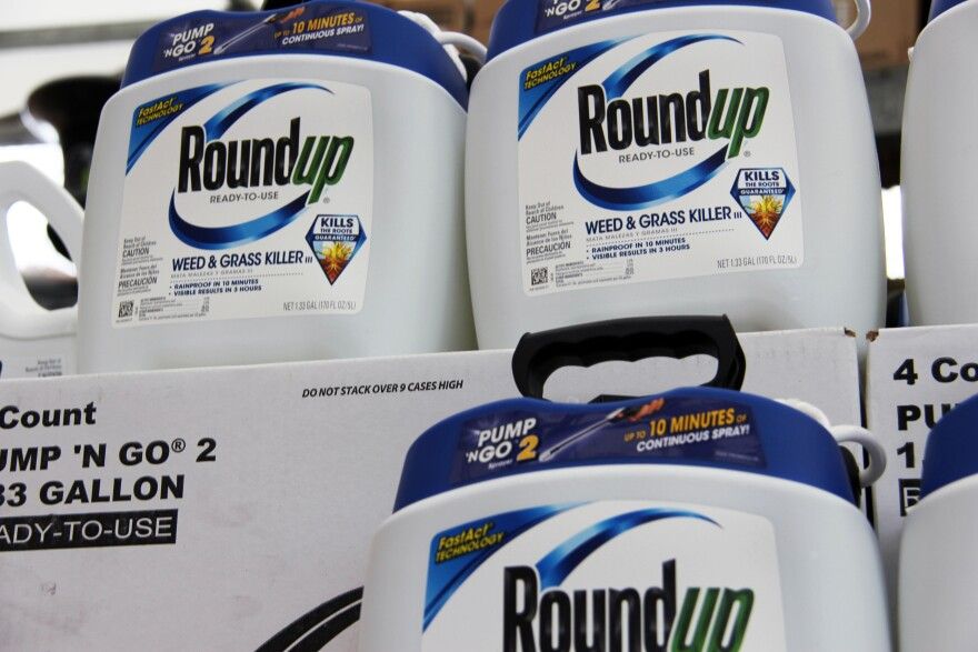 Monsanto's widely used weed killer Roundup on a shelf in Home Depot.