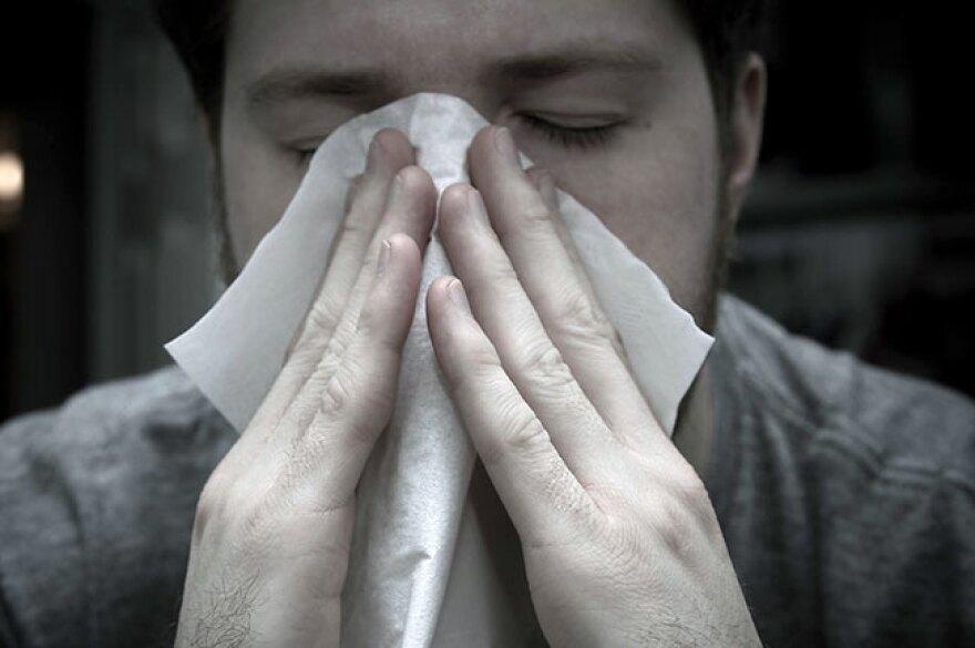 ub_allergies_2-12-18_2_r650_0.jpg