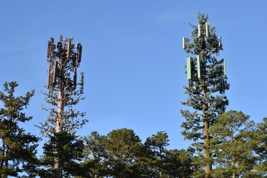 cell_tower_trees.jpg