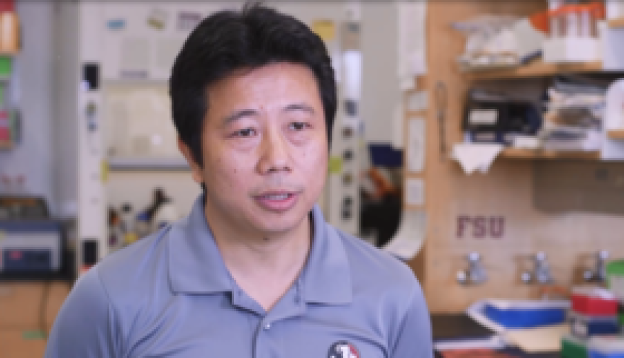 Florida State University Professor Hengli Tang discusses new research into the link between Zika virus and birth defects.
