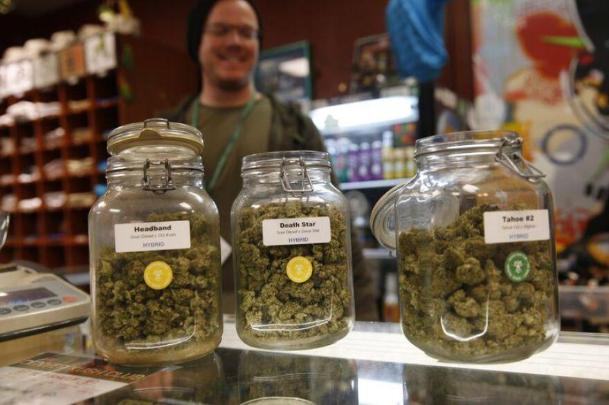 Efforts to legalize recreational pot are sprouting in Florida.