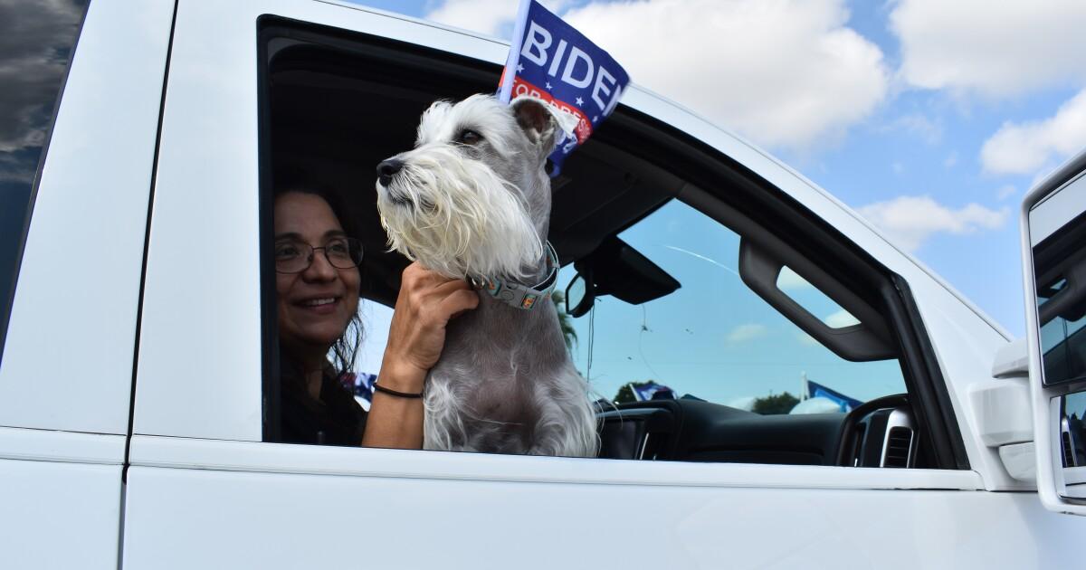 Democrats' 'Ridin' With Biden' Car Caravan Rolls Through Laredo   TPR