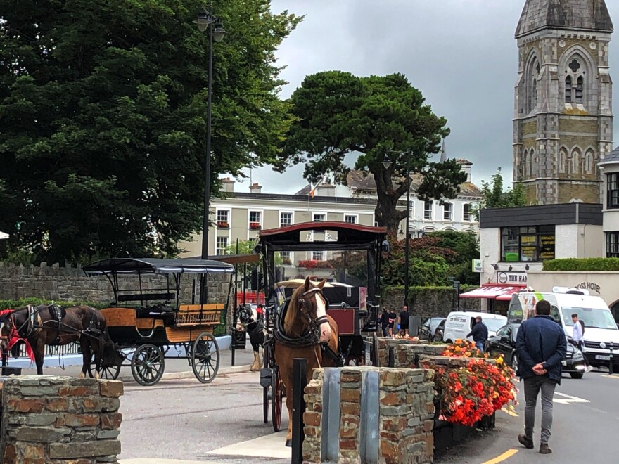 Idle horse-drawn carts in Killarney, Ireland.
