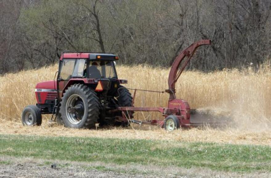 051614_miscanthus-tractor.jpg