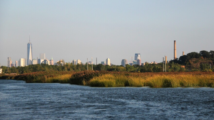 The Meadowlands are a vast marshy landscape just a few miles away from the New York City skyline. It's an industrial region, important economically as well as environmentally. A new plan proposes reworking the area into a vast floodable park, surrounded by berms that would protect local towns from the influx of water.