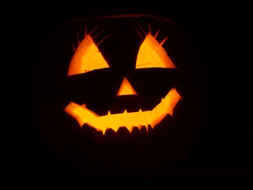 pumpkin-2892303_1920.jpg