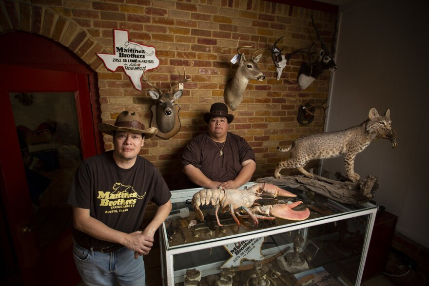PJ and Alex Martinez run the Martinez Brothers Taxidermy shop in South Austin.