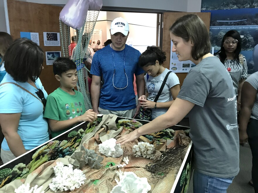 A family is looking at coral at the FWRI.