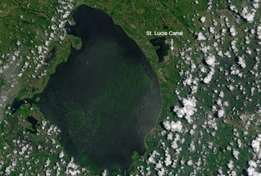 A massive algal bloom carpeted south and southwest Florida waterways last year, leading Senate President Joe Negron to propose speeding up construction of a massive reservoir south of Lake Okeechobee.