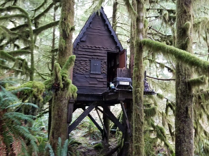 The cabin sits about 8 feet off the ground and was made with high-quality construction materials, solid wood planks and heavy-gauge bolts.