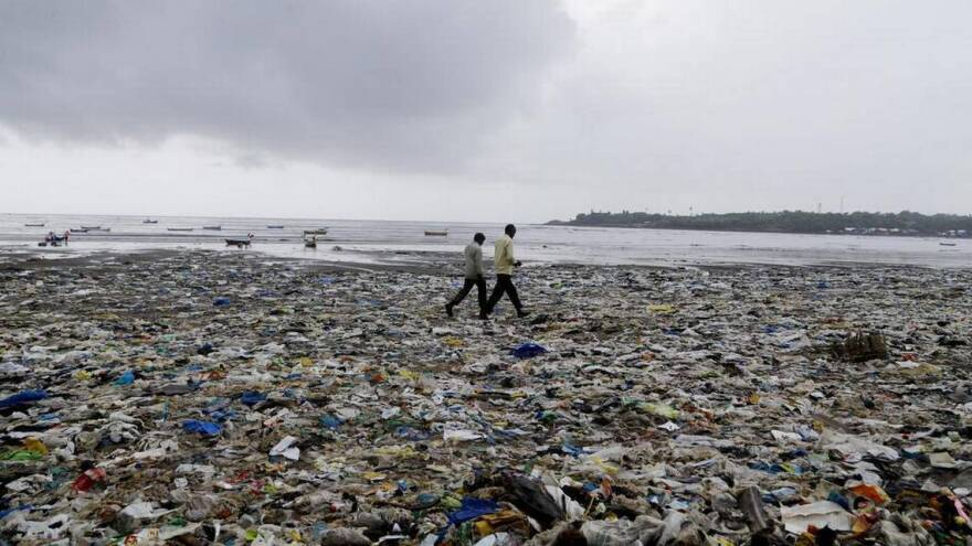By 2050, the plastic in the world's oceans is expected to outweigh the fish, according to the World Economic Forum.