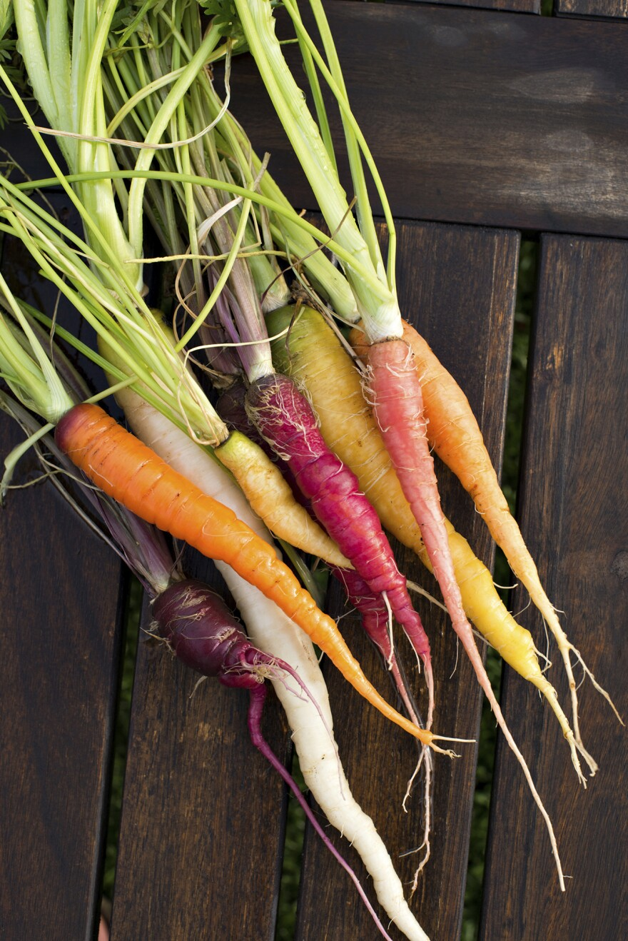 Rainbow carrots were originally developed by the USDA as an experiment to get more nutrients in food.