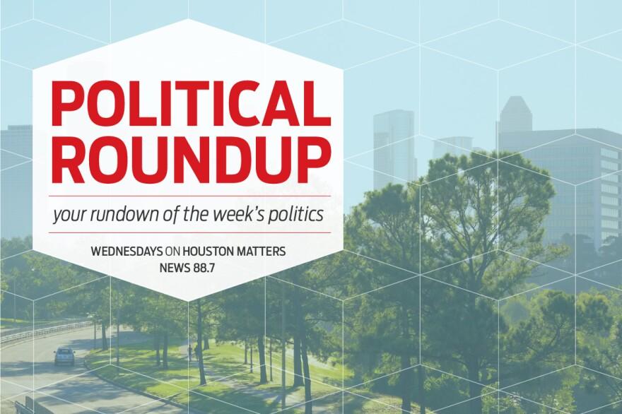 Political Roundup Generic 2020