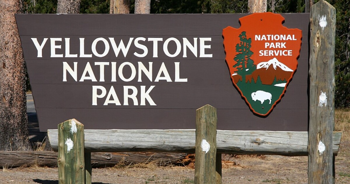Yellowstone National Park Press Release   Montana Public Radio