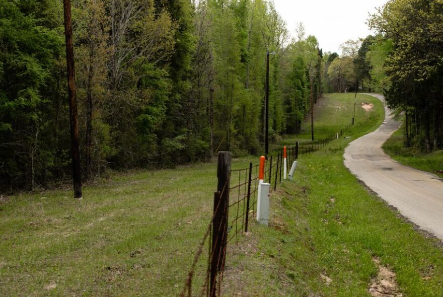 A heavily wooded area of a property off of CR 4515 near Athens that the owners got designated as an ecolab research area.