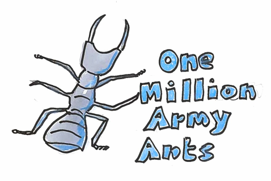 Imagine 1 million army ants.
