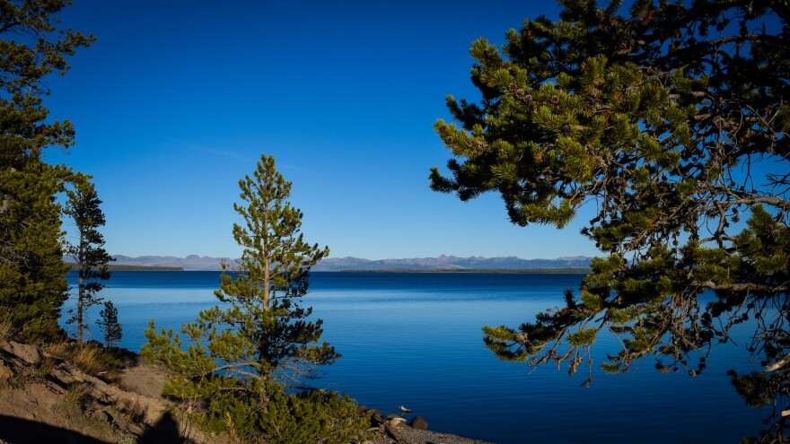 The deep blue waters of Yellowstone Lake were largely unaffected by runoff from the 1988 fires. The largest high alpine lake in North America, Yellowstone Lake's size played a role in its resilience, said scientist Richard Lathrop.