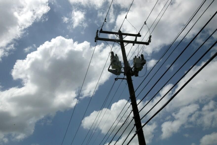 Electricity_Lines_by_Nasha_Lee_001.JPG