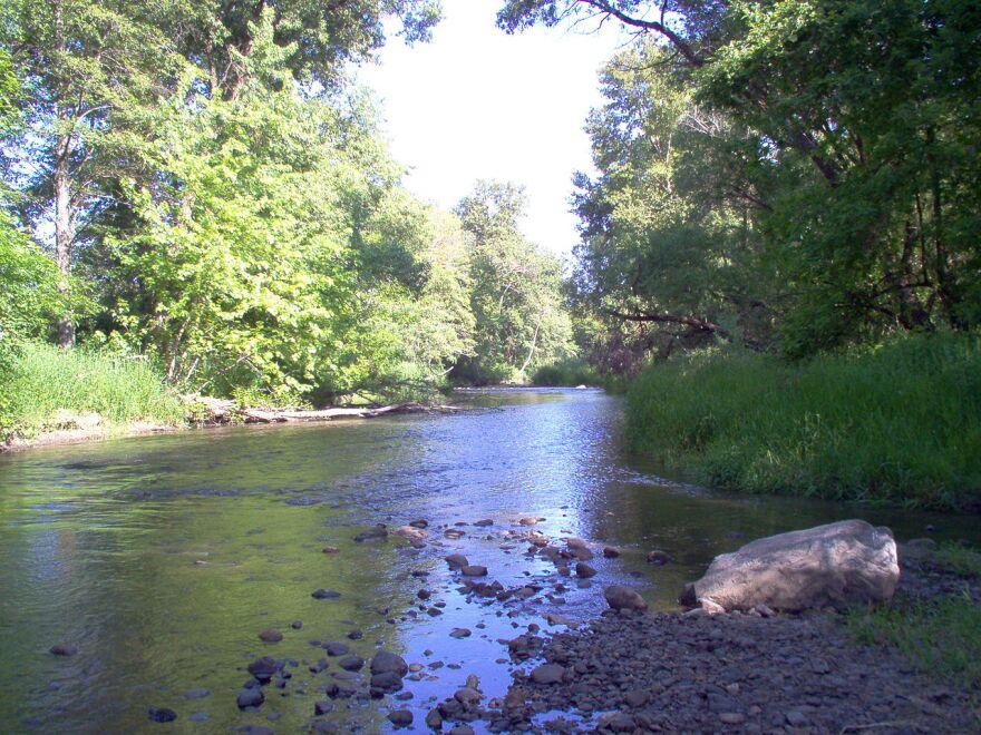 bear creek zab milenko.jpg
