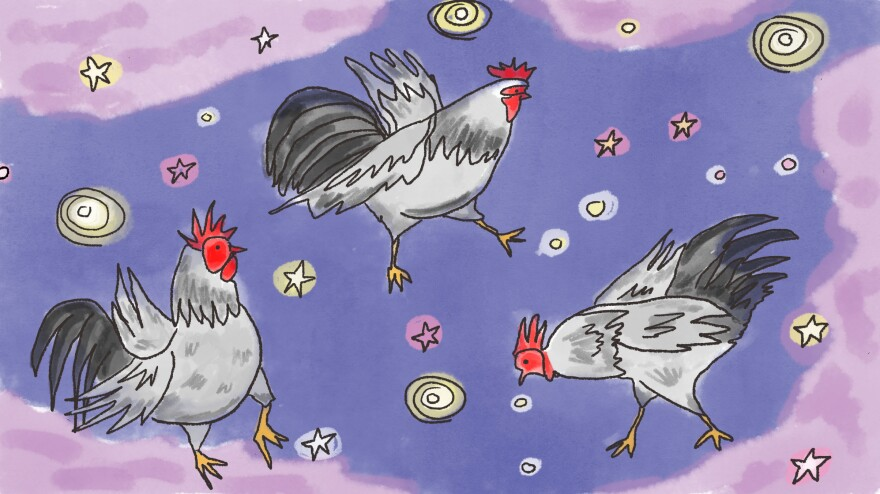 Roosters floating in the celestial sky