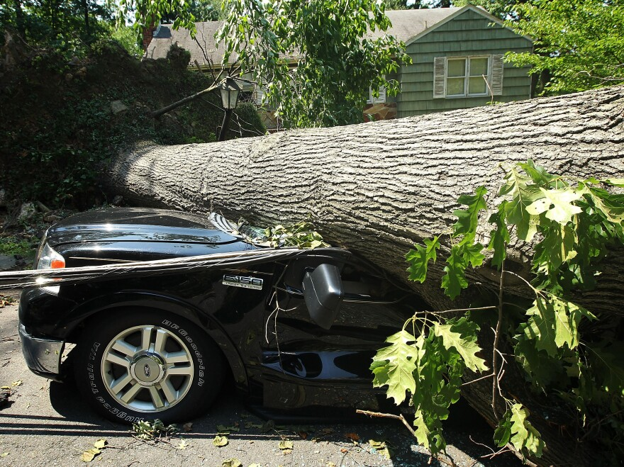 A fallen tree crushes a truck in Falls Church, Va., outside Washington. Storms across the Midwest and East downed trees and power lines and left millions without power.