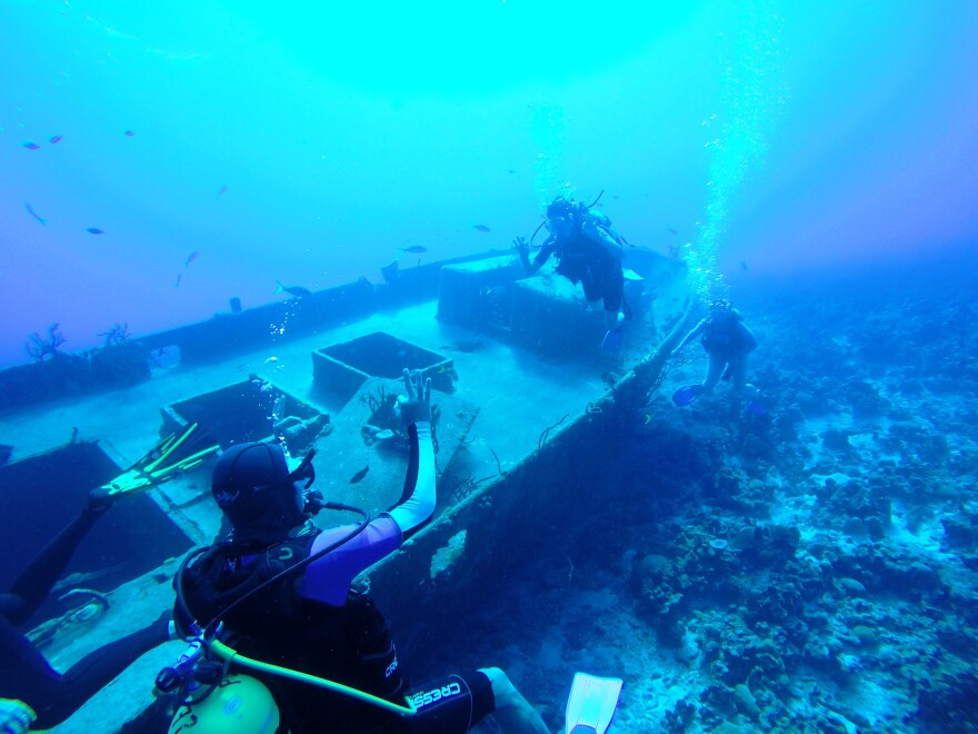 Diving in the Bay of Pigs, Cuba