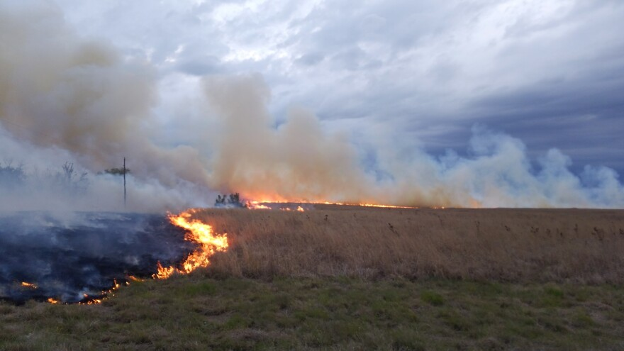A prescribed burn on Ed Koger's ranch near Belvidere, Kansas. The Lesser Prairie Chicken Initiative offers incentives to get ranchers like Koger to do things to help native grassland habitat. (Photo submitted by Ed Koger)