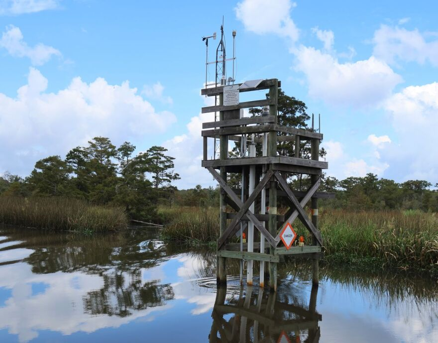 A nearly 30-foot tower standing in water near the Apalachicola River