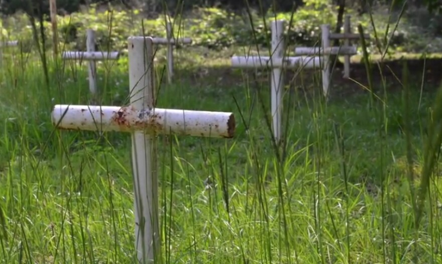 These crosses marked only a portion of the actual gravesites in the Boot Hill cemetery located on the grounds of the Dozier School for Boys in Marianna.