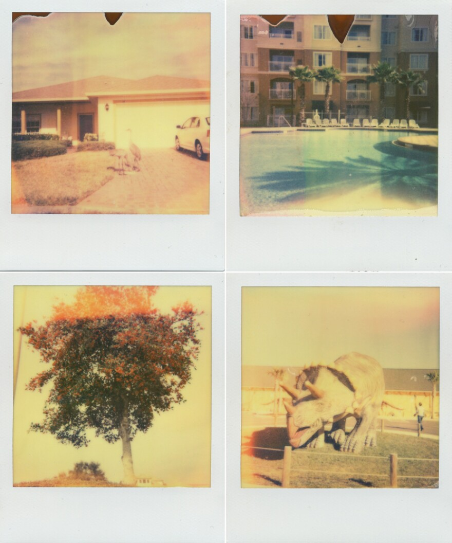 """Clockwise from top left: birds snack on seeds in Solivita, the pool at The Point Orlano Resort, a flowering tree in DeLand, and the entrance to Dinosaur World. Shot with <a href=""""http://the-impossible-project.com/"""">Impossible Project</a> film."""