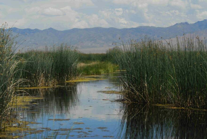Nevada's Stillwater National Wildlife Refuge, pictured here, will open up to pronhorn hunting under the U.S. Fish and Wildlife expansion.