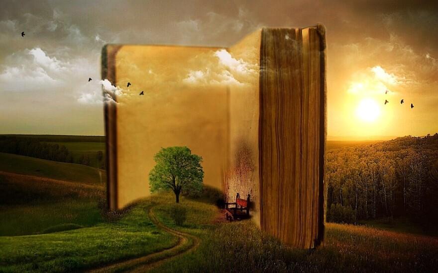 book_tree_chair_imagination.jpg