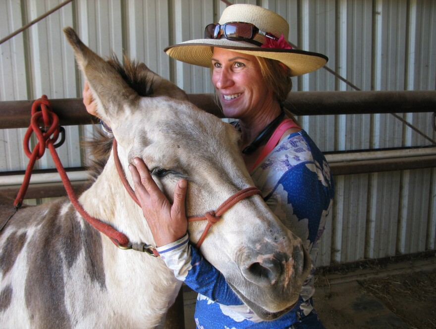 Melissa Schurr, with her 21-year-old jack donkey, Buckaroo, at a ranch near Sacramento, Calif. She says donkeys are like dogs, for their intelligence, loyalty and playfulness.