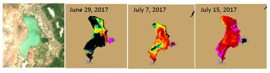 satellite maps show heat map of algae covering most of Utah Lake.