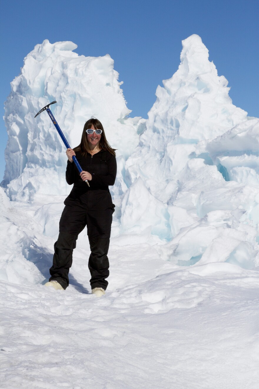 """Jynne Dilling Martin is a publicity director at Riverhead Books. She recently participated in the National Science Foundation's <a href=""""http://www.nsf.gov/geo/plr/aawr.jsp"""" target=""""_blank"""">Antarctic Artists and Writers Program</a>."""