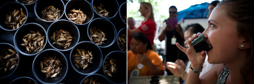 Katherine Eklund, with D.C Central Kitchen, competes in a cricket eating competition.