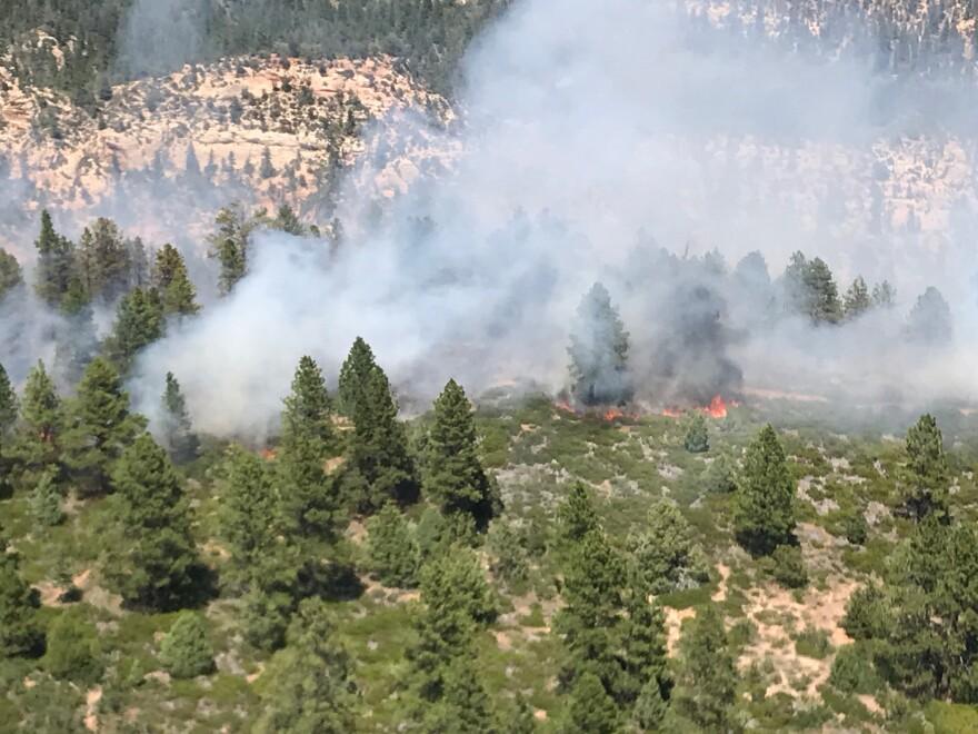 Photo of Peavin Canyon Fire.