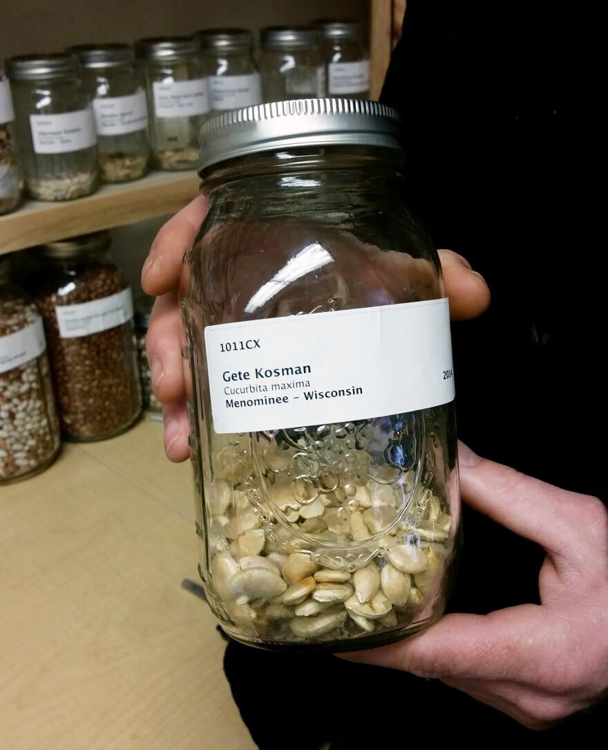Seeds of the ancient squash, called <em>Gete Okosman</em>.