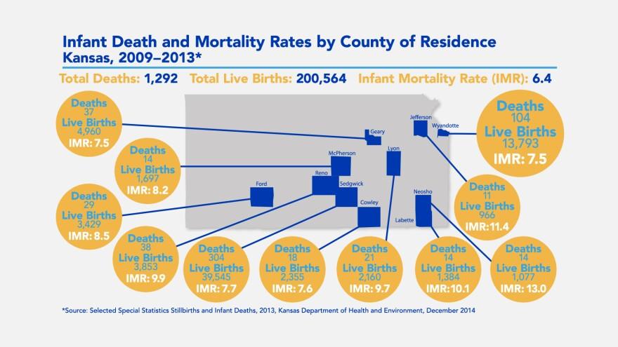 infantmortalitymap.jpg