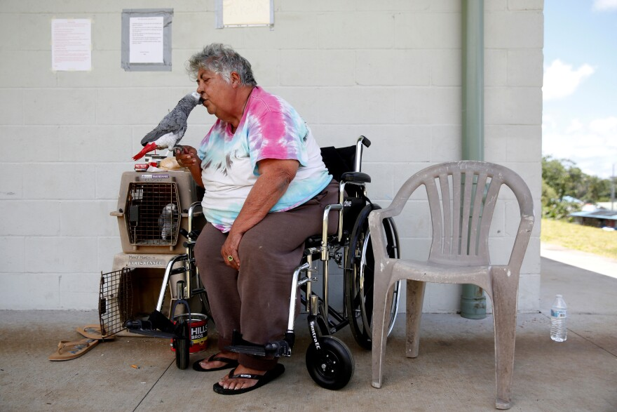 Linda Dee Souza, 72, of Kalapana-Seaview, kisses one of her parrots Tuesday at a Red Cross evacuation center in Pahoa.