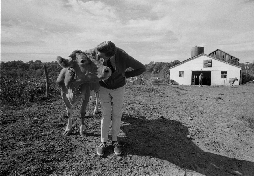 Fred works on the set for a <em>Mister Rogers</em> episode about cows, which included filming in a milking barn in western Pennsylvania.