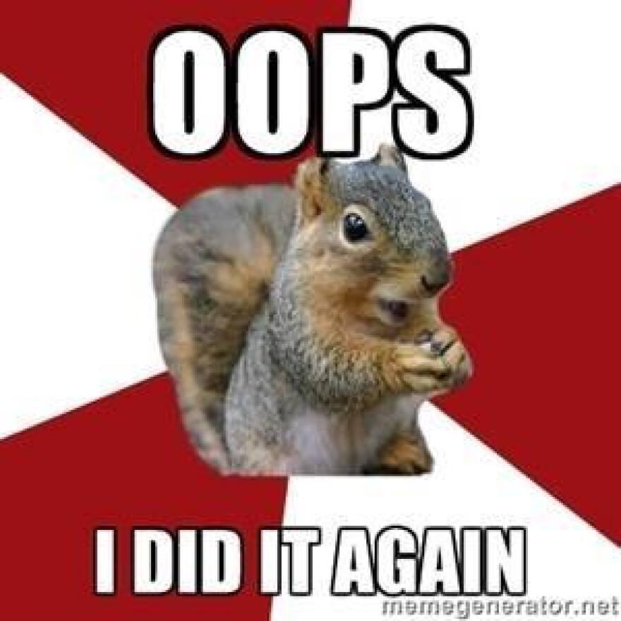 12-5-14_Squirrel_USF.jpg
