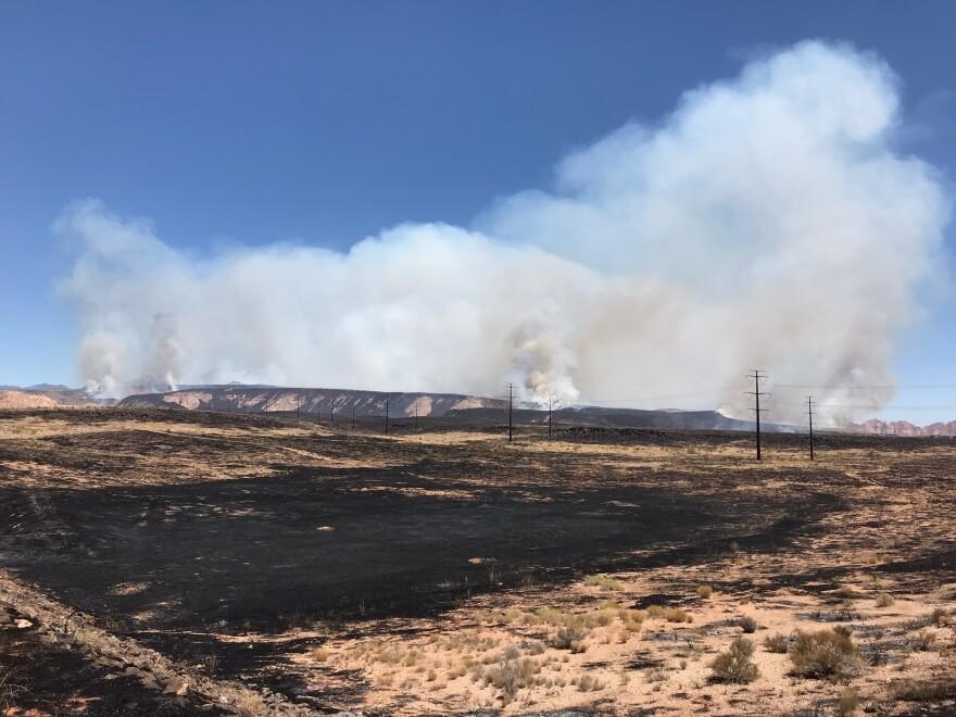 Photo of burnt land